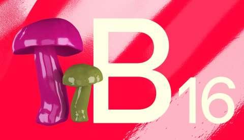 2018 09 19 B16 Web Imghouby4